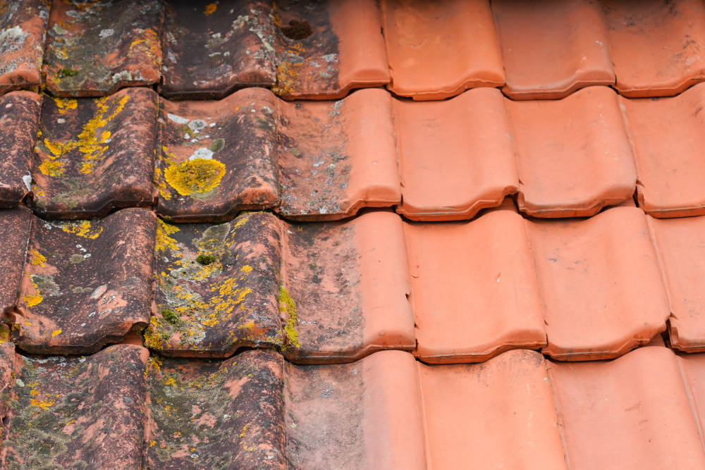 Roof Cleaning Cost & Prices 2021
